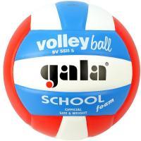 """Мяч вол. """"GALA School Foam Colour"""" арт. BV5511S, р. 5, вспен.синт.кожа ПУ,клеен,бут.кам,бел-гол-кр"""