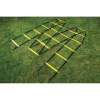 """Лестница для трен. """"MITRE"""" арт. A3084AYA1, ДЛИНА 9 м!!!, пластик, полиэстер, желт-чер"""