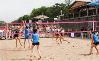 Сетка волейбольная нить 2,8 мм, с тросом 6мм (пляжная) 1х8,5м 6028-03